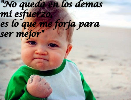 muchas frases